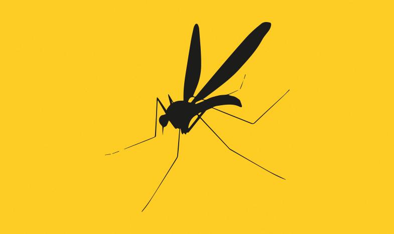 Febre amarela: o que você precisa saber